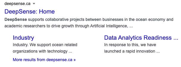 SERP results for DeepSense with Site Links